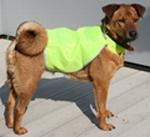 Honden veiligheidsvest