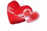 Valentijn kussen met geluid
